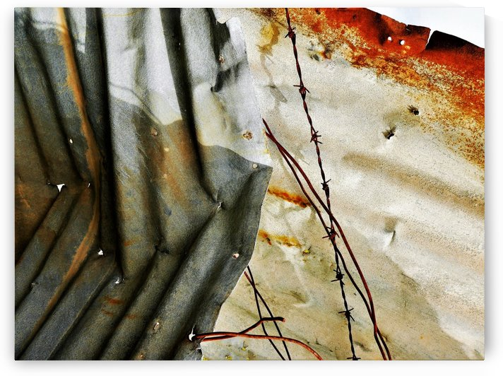 Corrugated Iron Series 19 by Lexa Harpell