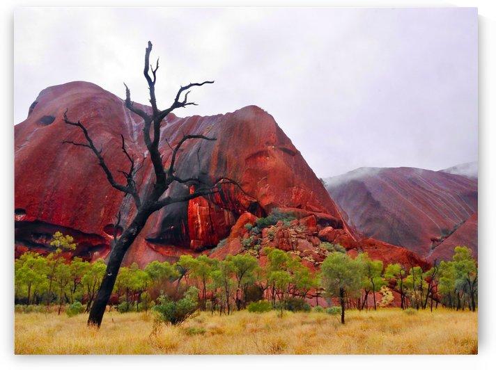 After the Rain - Uluru Australia by Lexa Harpell