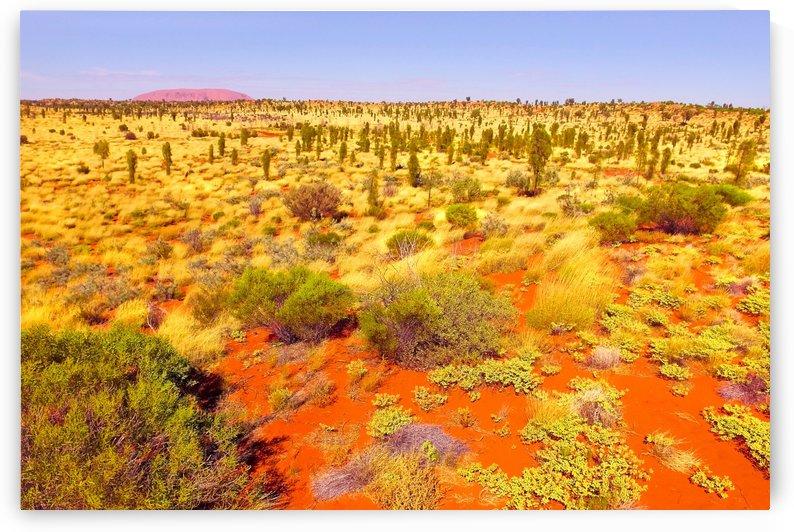 Dune Landscape - Central Australia by Lexa Harpell