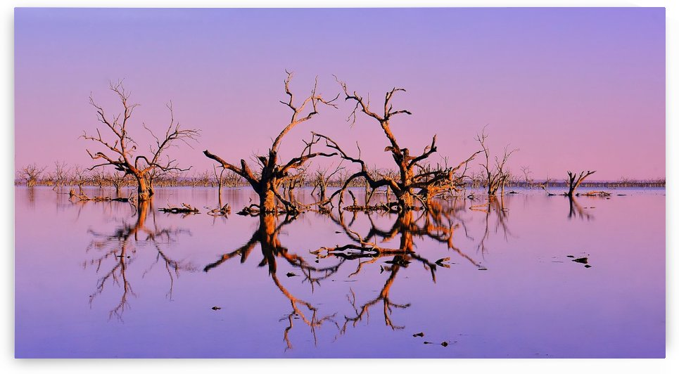 Twin Reflections - Pamamaroo Lake by Lexa Harpell