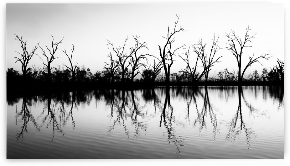 B W Lake Sunset 2 by Lexa Harpell
