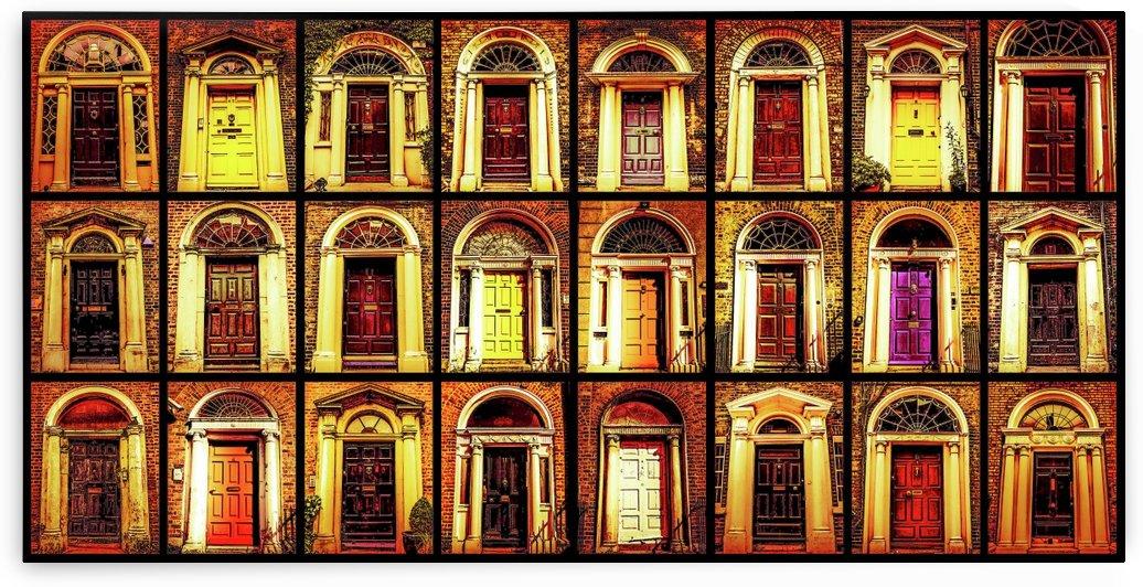 Georgian Doors of Dublin 3 by Lexa Harpell