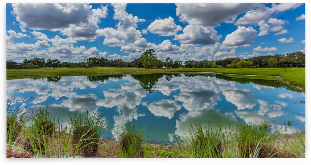 CLOUDS REFLECTION by George Bloise