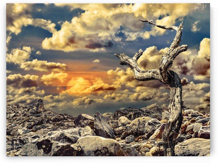 Fantasy Lanscape Scene by Daniel Ferreia Leites Ciccarino