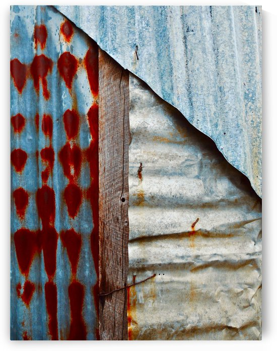 Corrugated Iron Series 10 by Lexa Harpell