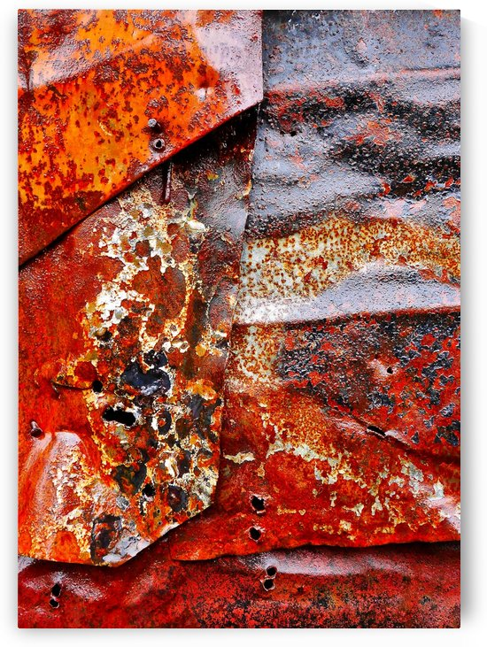 Corrugated Iron Series 21 by Lexa Harpell