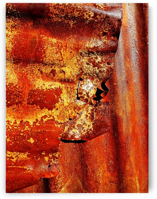 Corrugated Iron Series 7 by Lexa Harpell