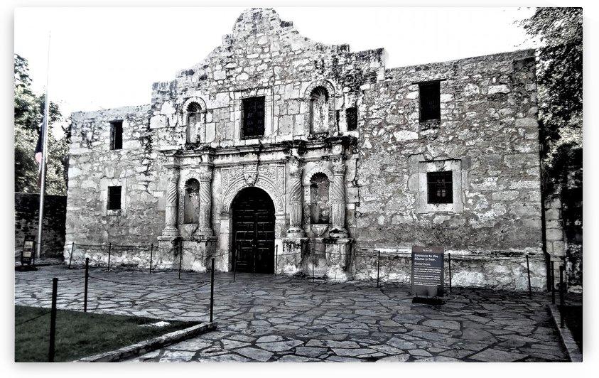 Alamo by Efrain Montanez