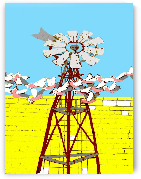 Windmill and Galahs by Lexa Harpell