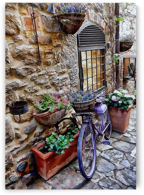 Purple Bicycle Cortona by Dorothy Berry-Lound