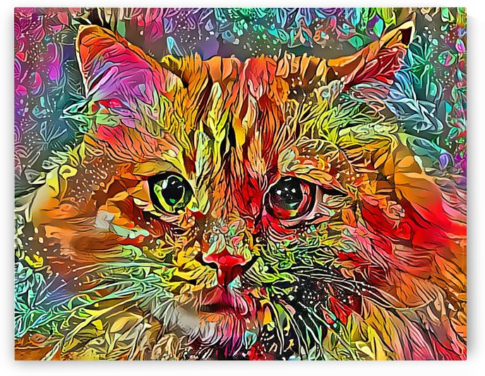 Flower Power Jenny Cat by HH Photography of Florida