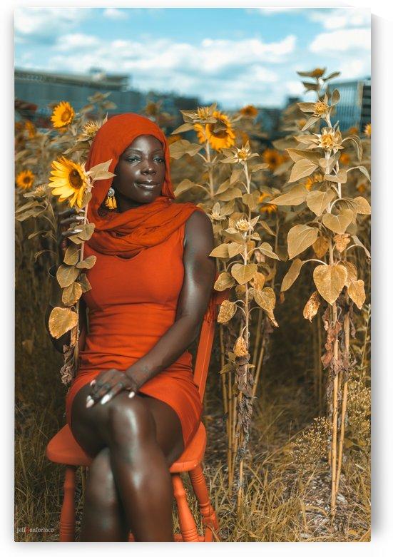 Black Beauty Sun Flower by JeffHonforloco Photography