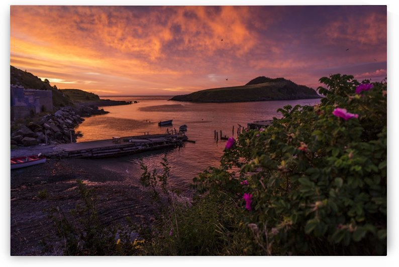 Tors Cove Sunrise by Raisa Mirza