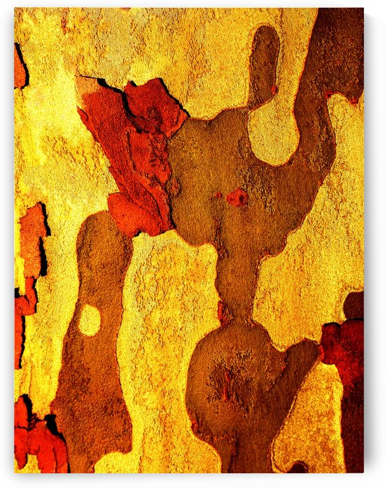 Aussie Gum Tree Bark - 21 by Lexa Harpell