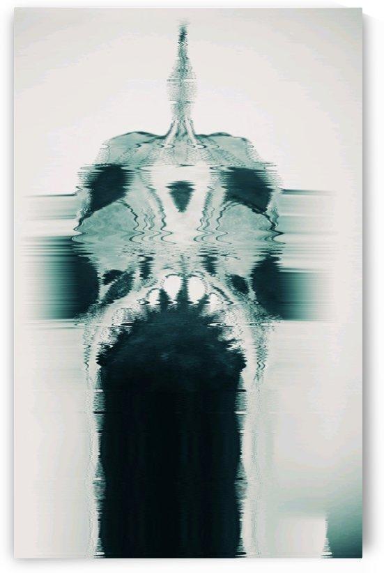 Piranha Skull by Rabid Solutions