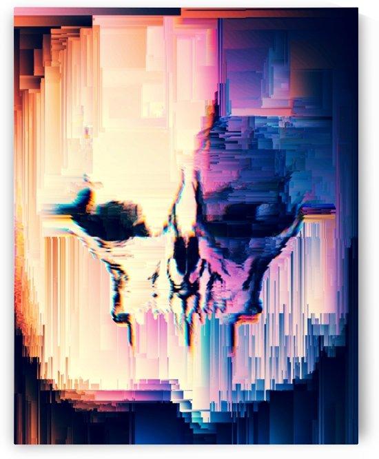 Tarsier Skull by Rabid Solutions