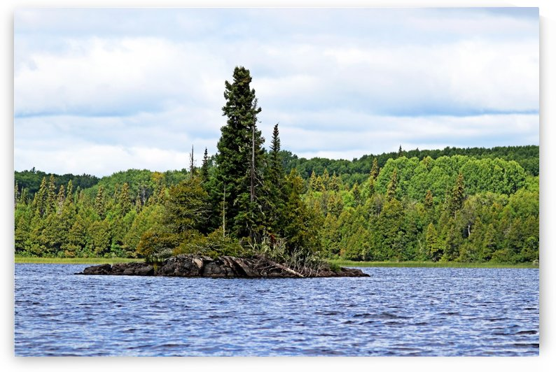 Island In Bonar Lake by Deb Oppermann