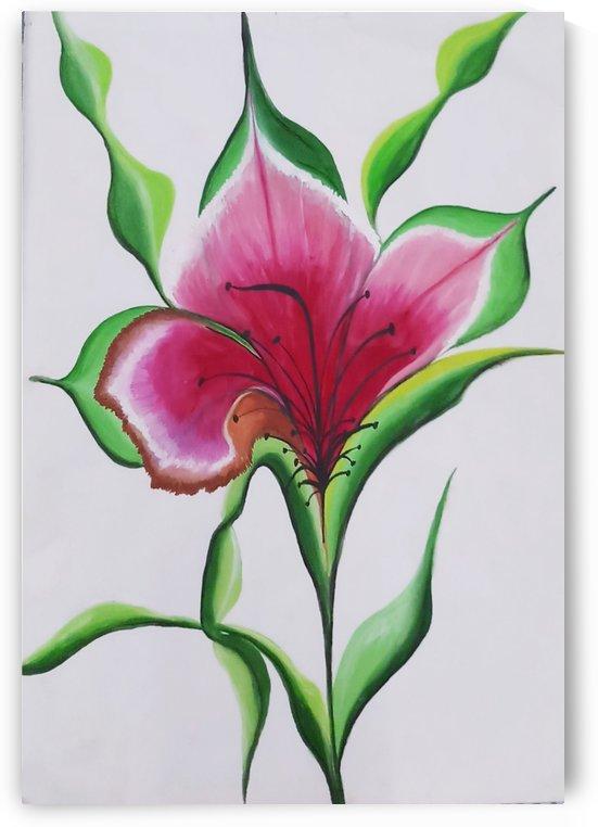 Serene hibiscus flower. by Nikita