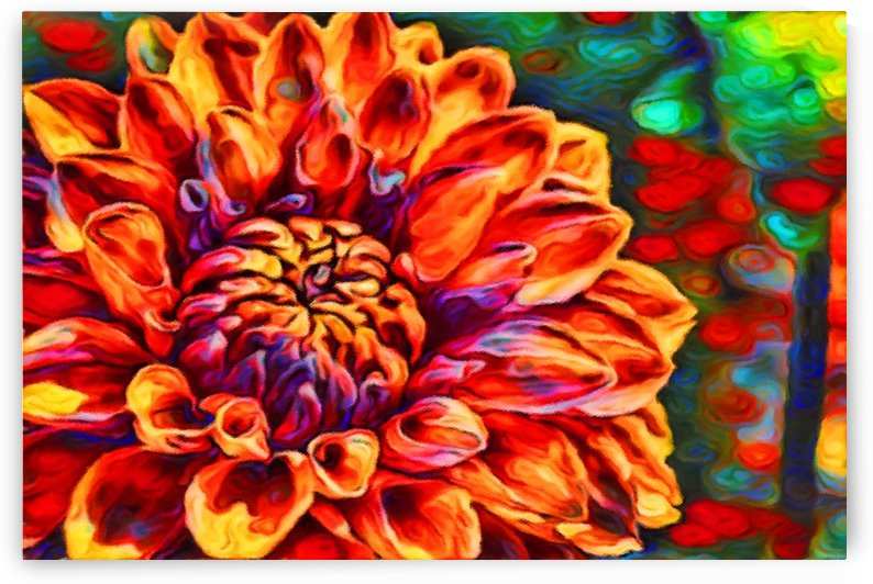 Flower Colors by George Bloise