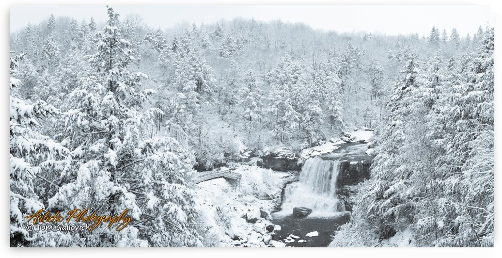 Blackwater Falls by Artistic Photography