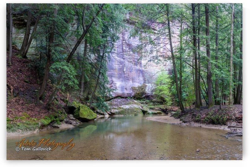 Near Cedar Falls by Artistic Photography