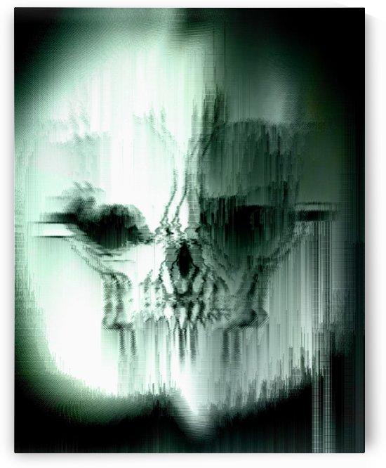 Tarsier Skull Glitched by Rabid Solutions