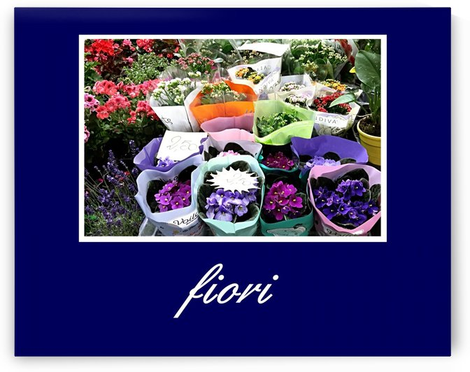 Poster Fiori by Peter Horrocks