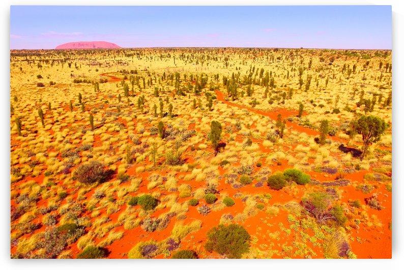 Dunes Aerial  - to Uluru by Lexa Harpell