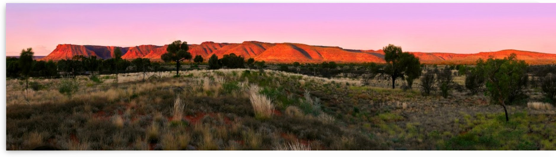 Last Rays - Kings Canyon by Lexa Harpell