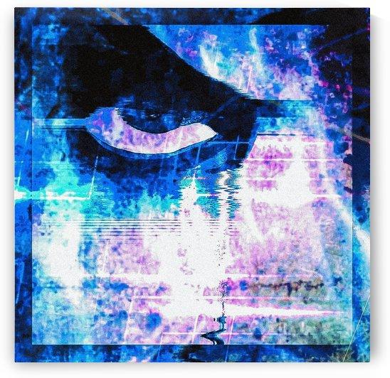 Modern Eye 1 by Rabid Solutions