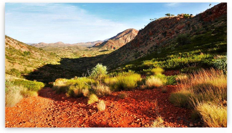 Pound Track - Ormiston Gorge by Lexa Harpell