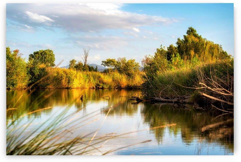 Serene River by Ann Skrobot
