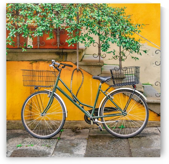 Bicycle Parked at Wall, Lucca, Italy by Daniel Ferreia Leites Ciccarino