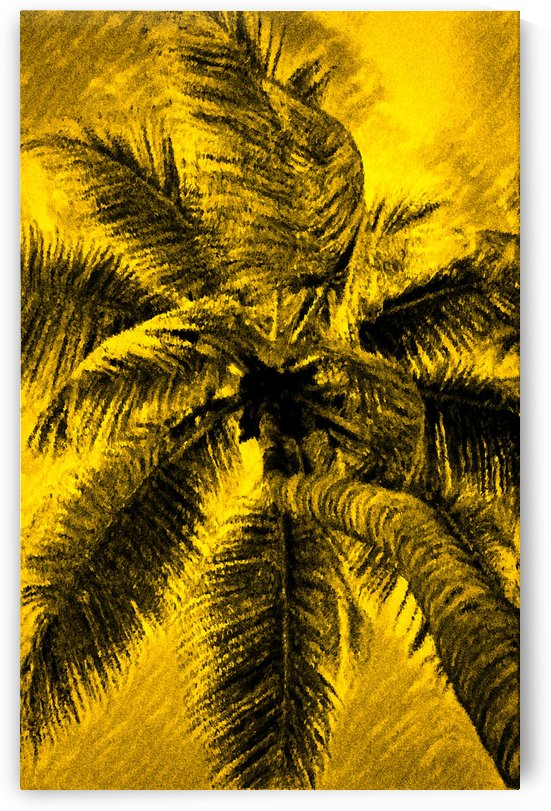 Palm Gold by George Bloise