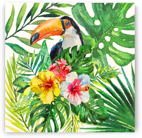 Tropical Forest Toucan  by HH Photography of Florida