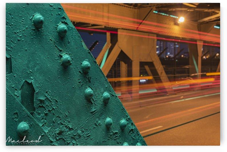 High Level Bridge Edmonton DSC_9318 by Brian Macleod