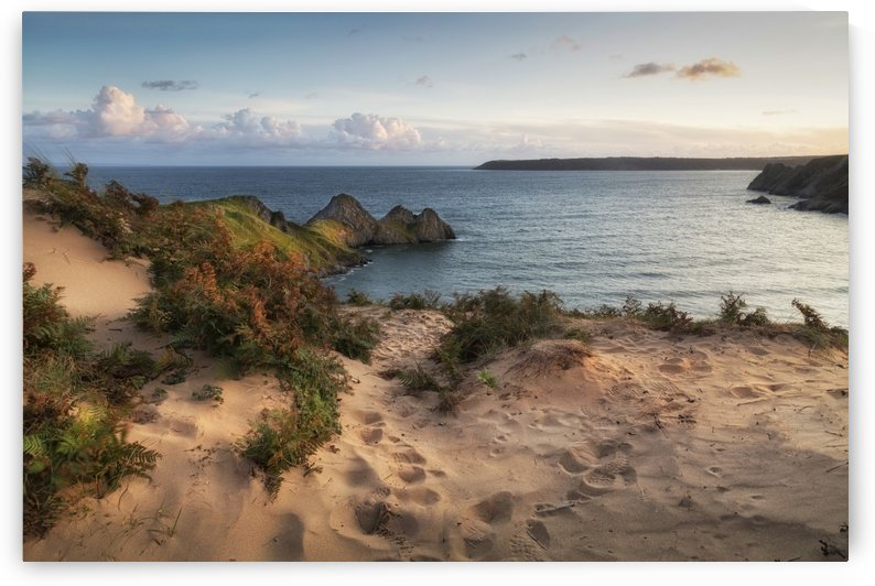 The sand dunes overlooking Three Cliffs Bay by Leighton Collins