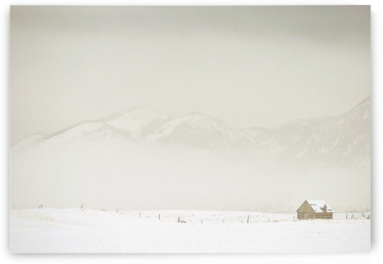 Winter Isolation by Scene Again Images: Photography by Cliff Davis