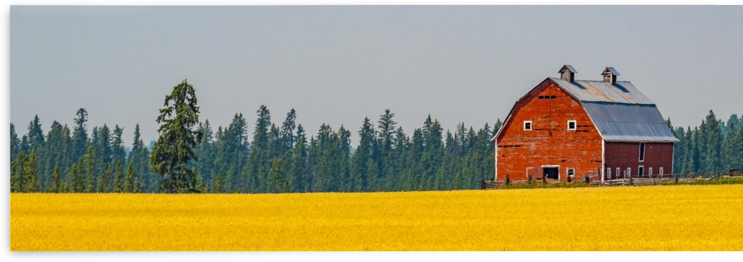 Flathead Barn Panorama by Scene Again Images: Photography by Cliff Davis