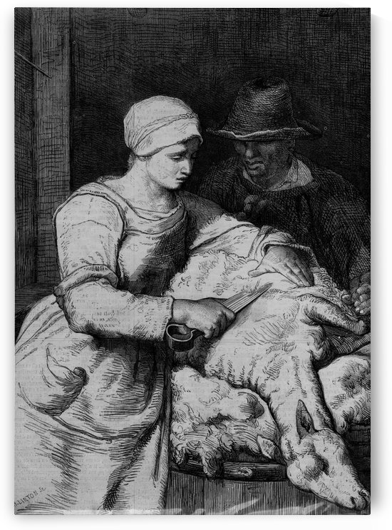 Sheep shearer by Jean-Francois Millet