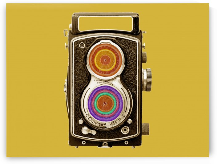 Vintage camera photo collage by Filipa Sara Popova