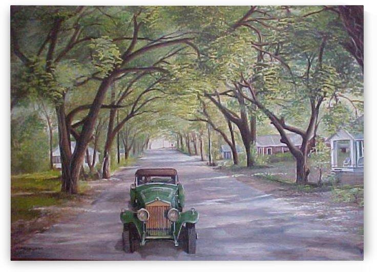 Drive Down Shadow Lane by Teresa Trotter