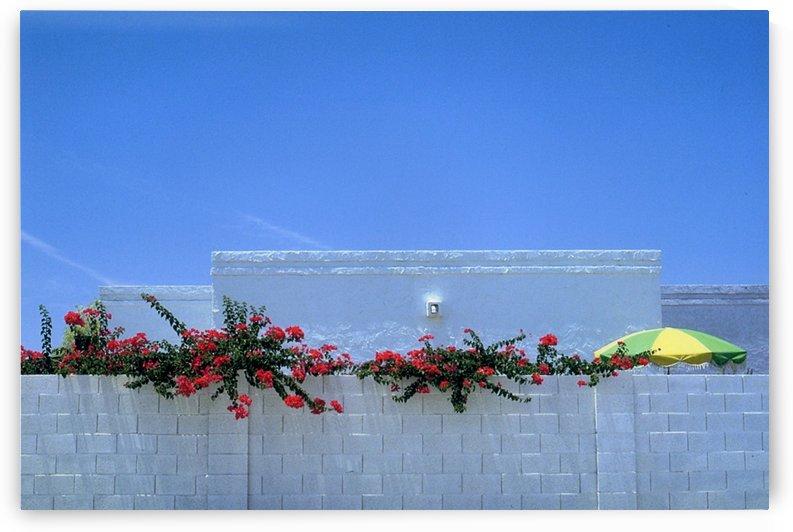 Arizona Patio Photograph by Katherine Lindsey Photography