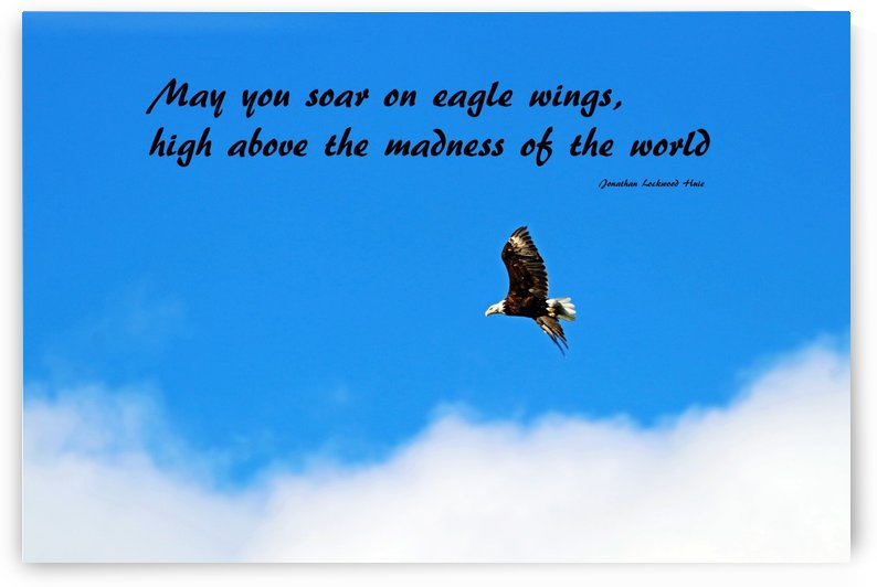Soar On Eagle Wings by Deb Oppermann