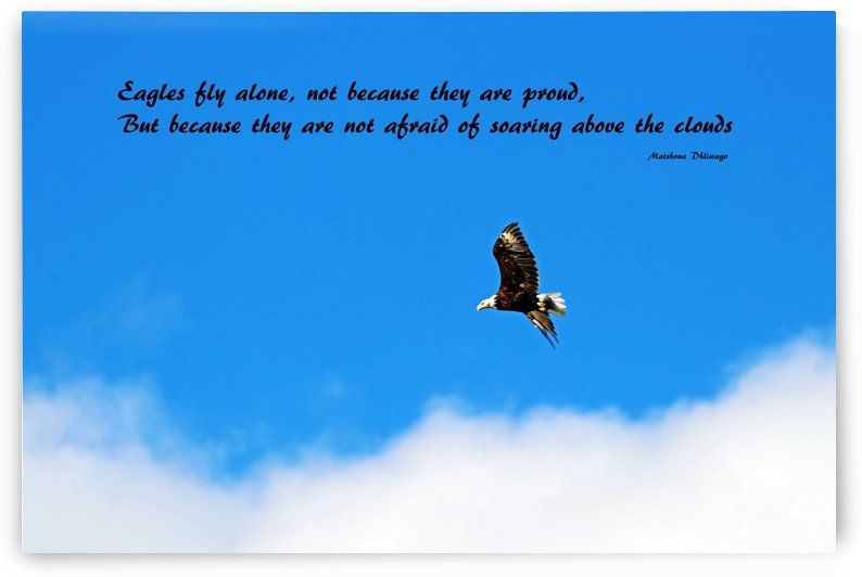 Eagles Fly Alone by Deb Oppermann