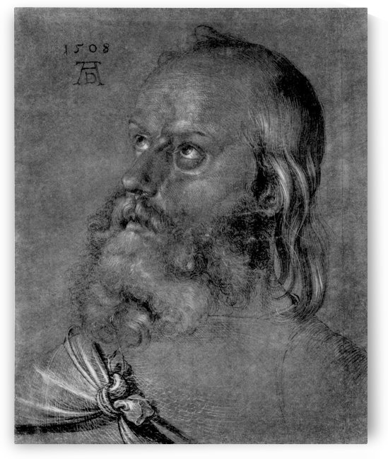 Head of apostle by Albrecht Durer