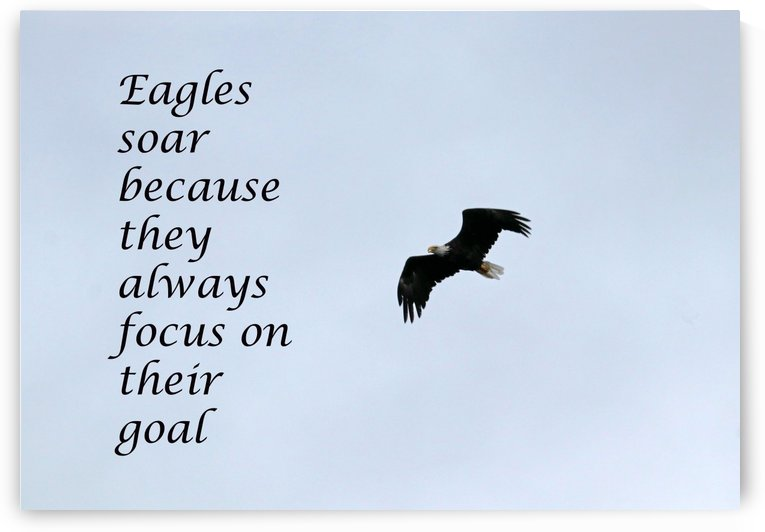 Focus On Your Goal by Deb Oppermann