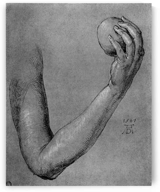 Arm of Eve by Albrecht Durer