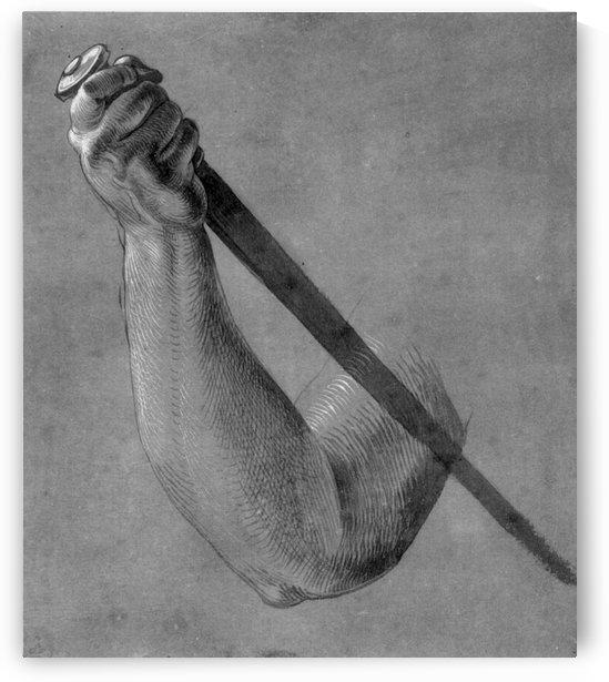 Arm of Lucretia by Albrecht Durer