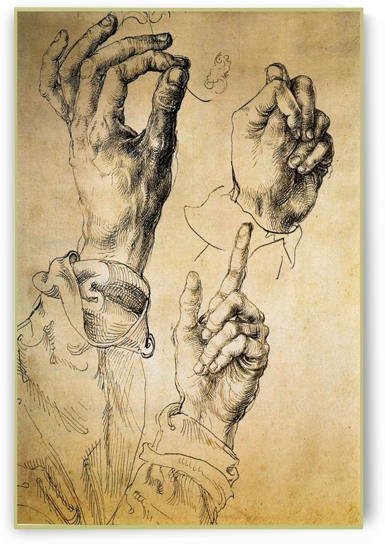 Study of Three Hands by Albrecht Durer